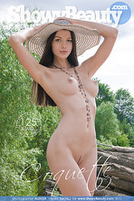 Showy Beauty - COQUETTE